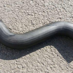 Przewód Wąż wody MAN od termostatu do chłodnicy